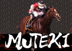 muteki006