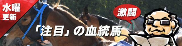 血統シックスの無料コンテンツ注目の血統馬